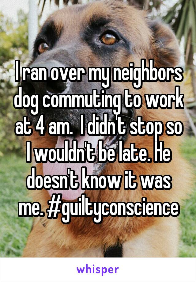 I ran over my neighbors dog commuting to work at 4 am.  I didn't stop so I wouldn't be late. He doesn't know it was me. #guiltyconscience