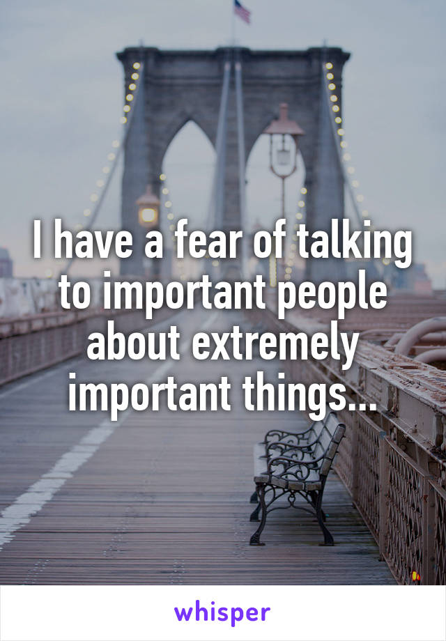 I have a fear of talking to important people about extremely important things...