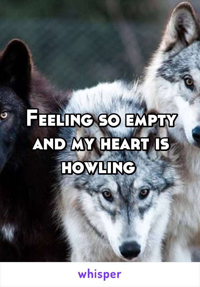 Feeling so empty and my heart is howling