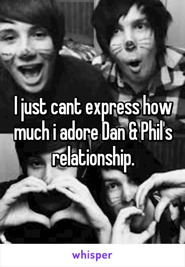 I just cant express how much i adore Dan & Phil's relationship.
