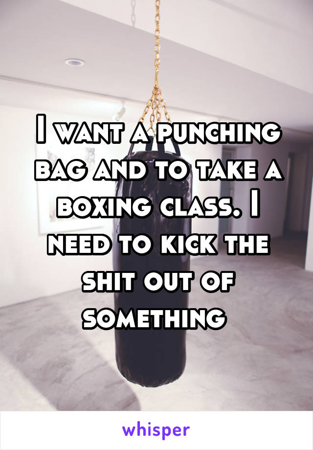 I want a punching bag and to take a boxing class. I need to kick the shit out of something