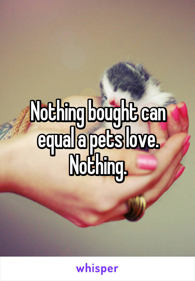 Nothing bought can equal a pets love. Nothing.