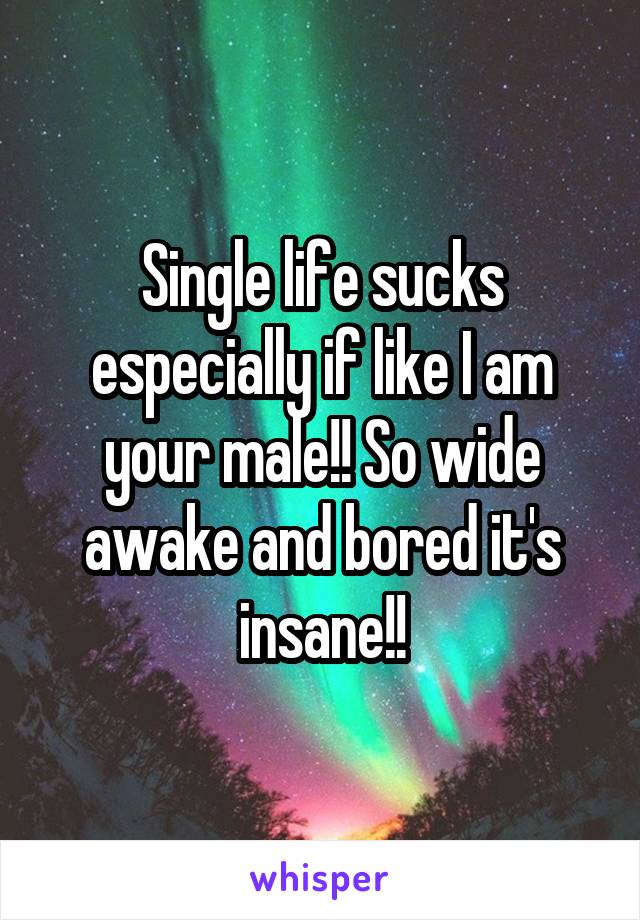 Single life sucks especially if like I am your male!! So wide awake and bored it's insane!!