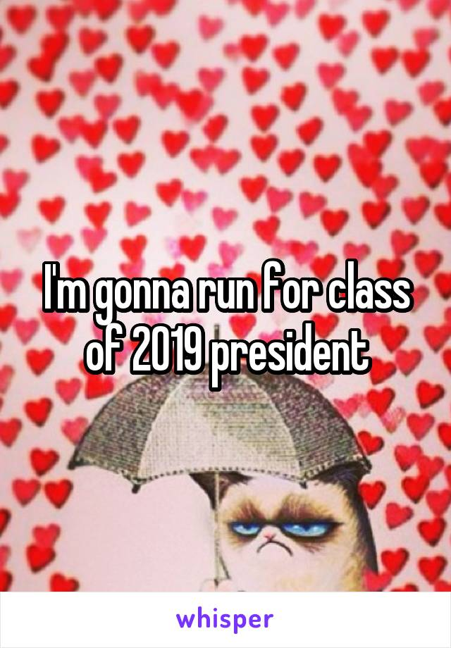 I'm gonna run for class of 2019 president