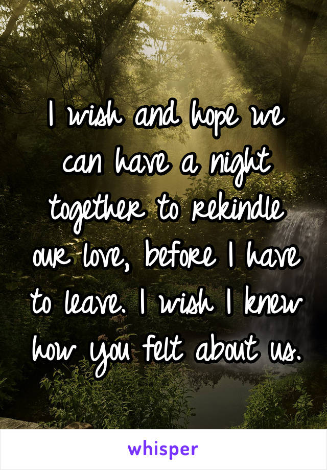 I wish and hope we can have a night together to rekindle our love, before I have to leave. I wish I knew how you felt about us.