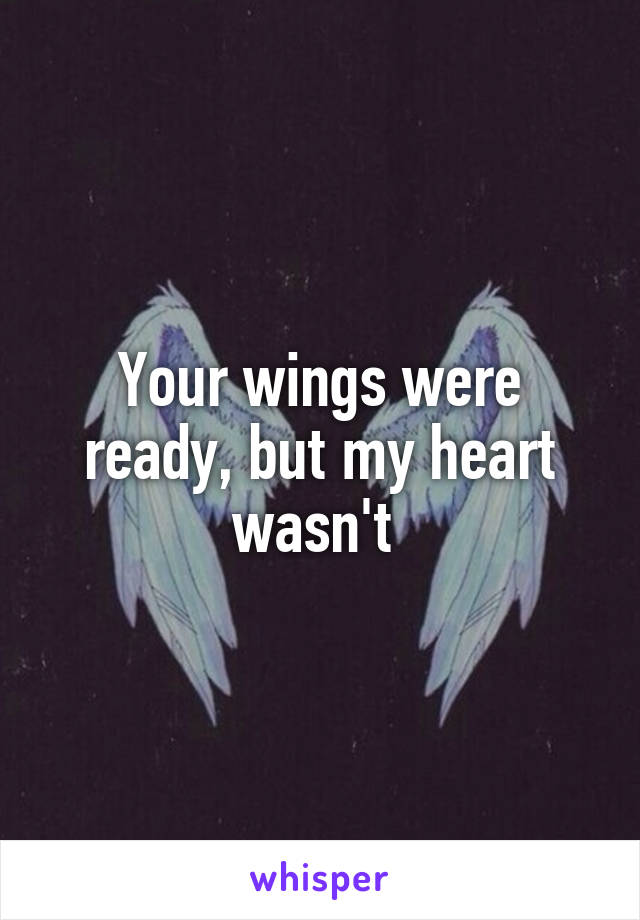 Your wings were ready, but my heart wasn't