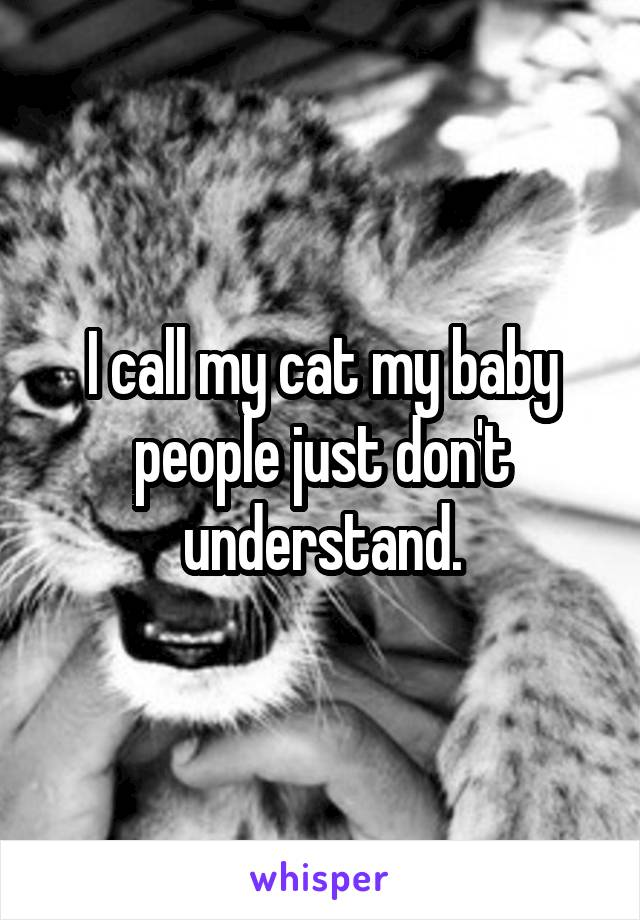 I call my cat my baby people just don't understand.