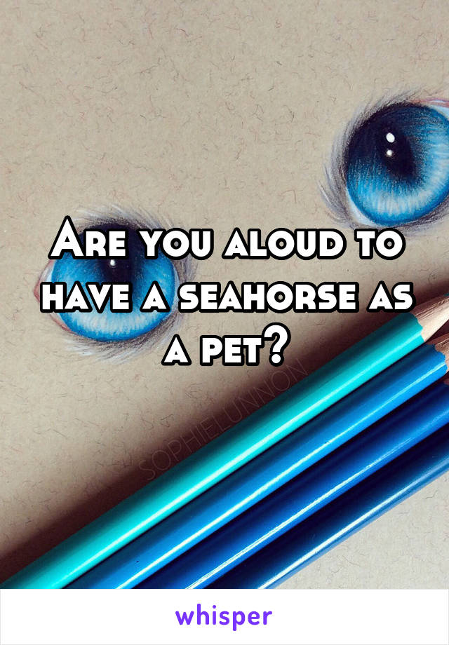 Are you aloud to have a seahorse as a pet?