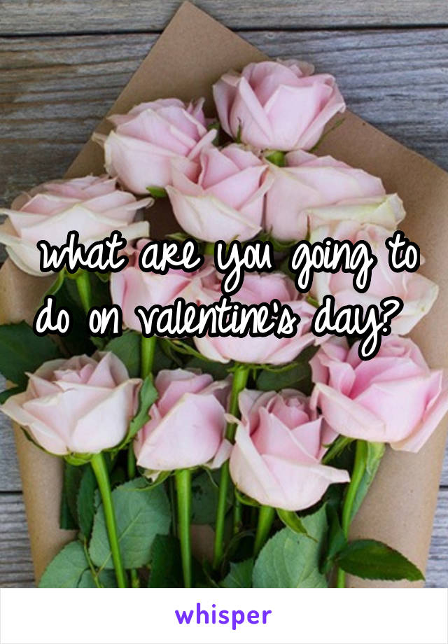what are you going to do on valentine's day?