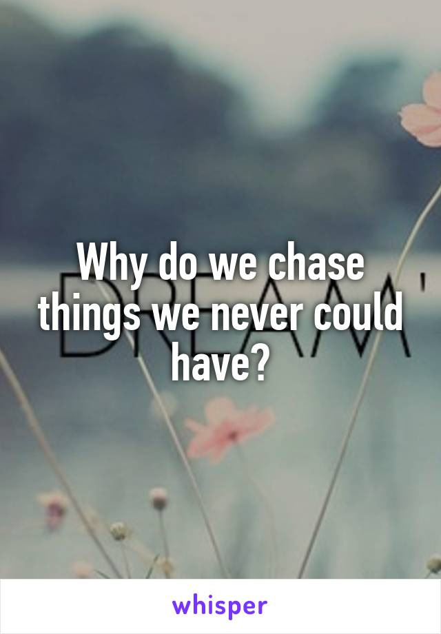 Why do we chase things we never could have?