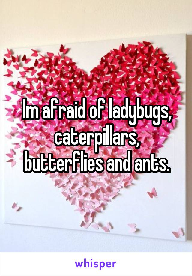 Im afraid of ladybugs, caterpillars, butterflies and ants.