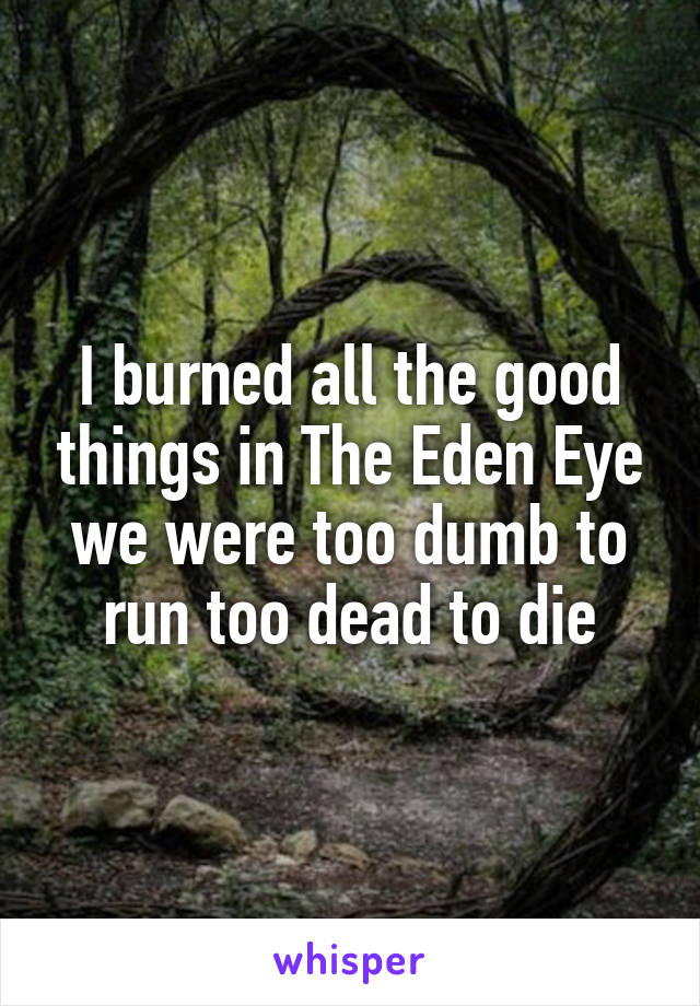 I burned all the good things in The Eden Eye we were too dumb to run too dead to die