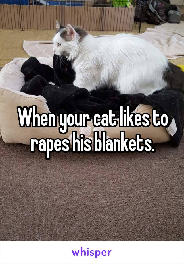 When your cat likes to rapes his blankets.