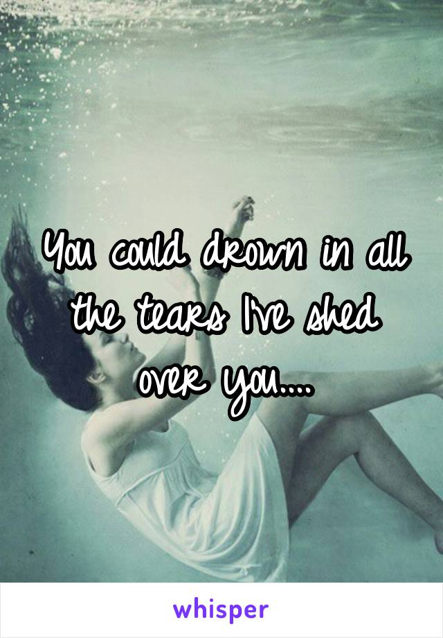You could drown in all the tears I've shed over you....