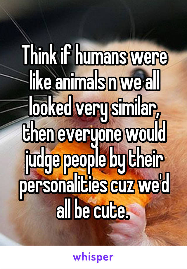 Think if humans were like animals n we all looked very similar, then everyone would judge people by their personalities cuz we'd all be cute.