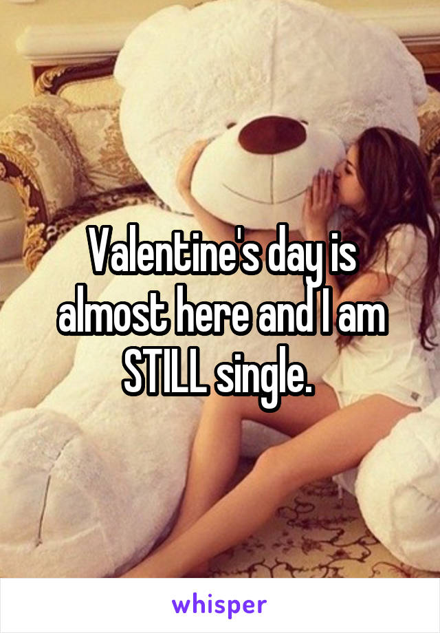 Valentine's day is almost here and I am STILL single.