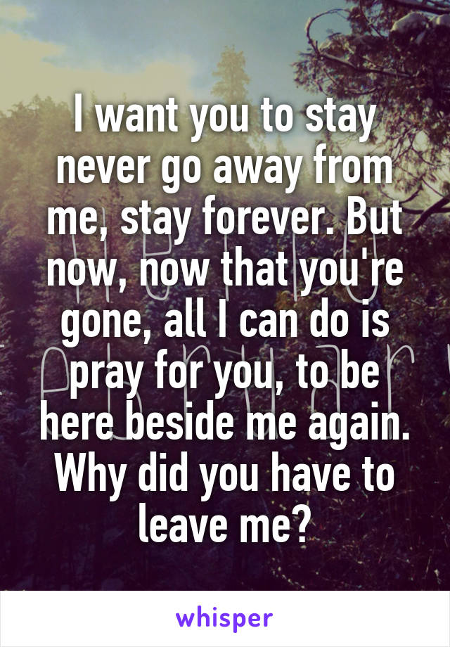 I want you to stay never go away from me, stay forever. But now, now that you're gone, all I can do is pray for you, to be here beside me again. Why did you have to leave me?