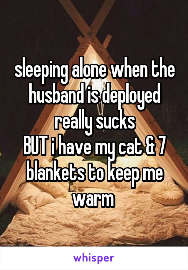 sleeping alone when the husband is deployed really sucks BUT i have my cat & 7 blankets to keep me warm