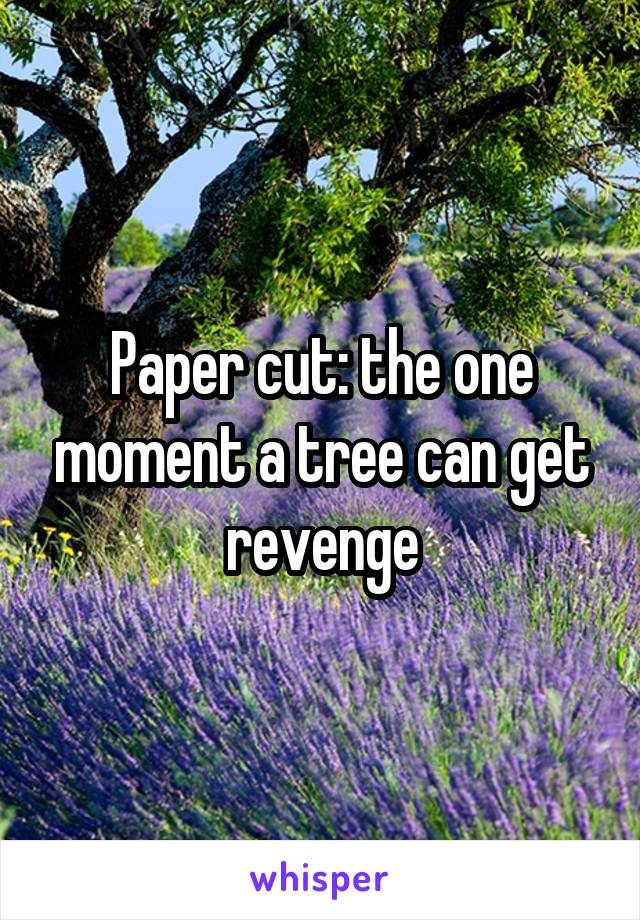 Paper cut: the one moment a tree can get revenge