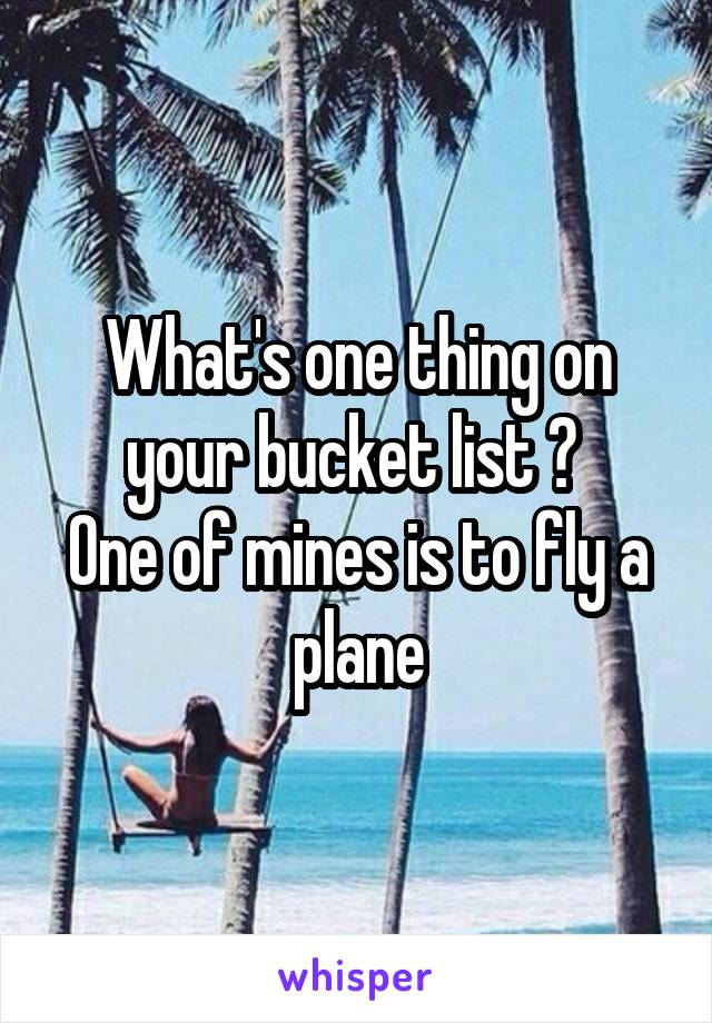 What's one thing on your bucket list ?  One of mines is to fly a plane