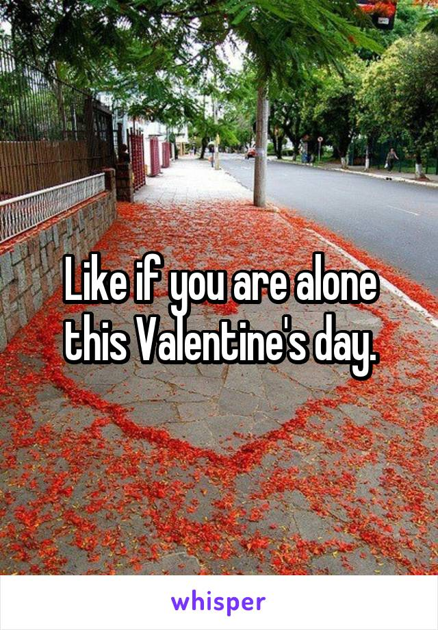 Like if you are alone this Valentine's day.