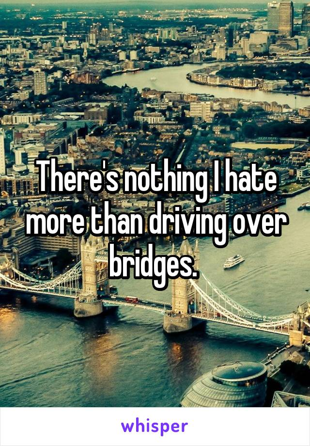 There's nothing I hate more than driving over bridges.