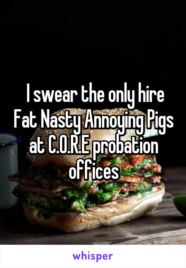 I swear the only hire Fat Nasty Annoying Pigs at C.O.R.E probation offices