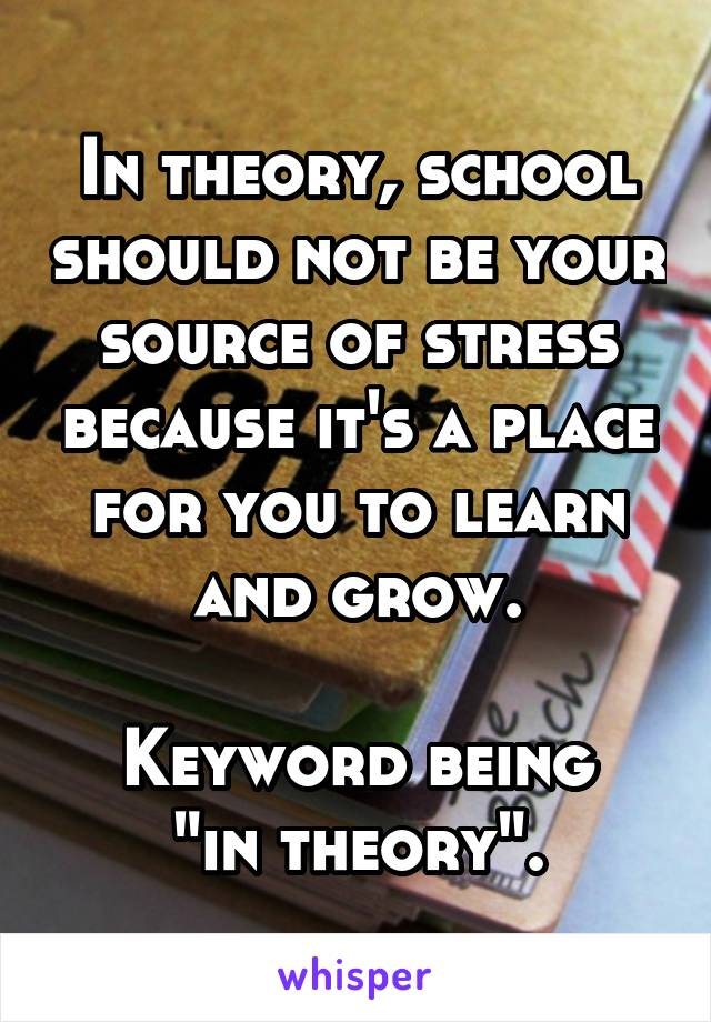 """In theory, school should not be your source of stress because it's a place for you to learn and grow.  Keyword being """"in theory""""."""
