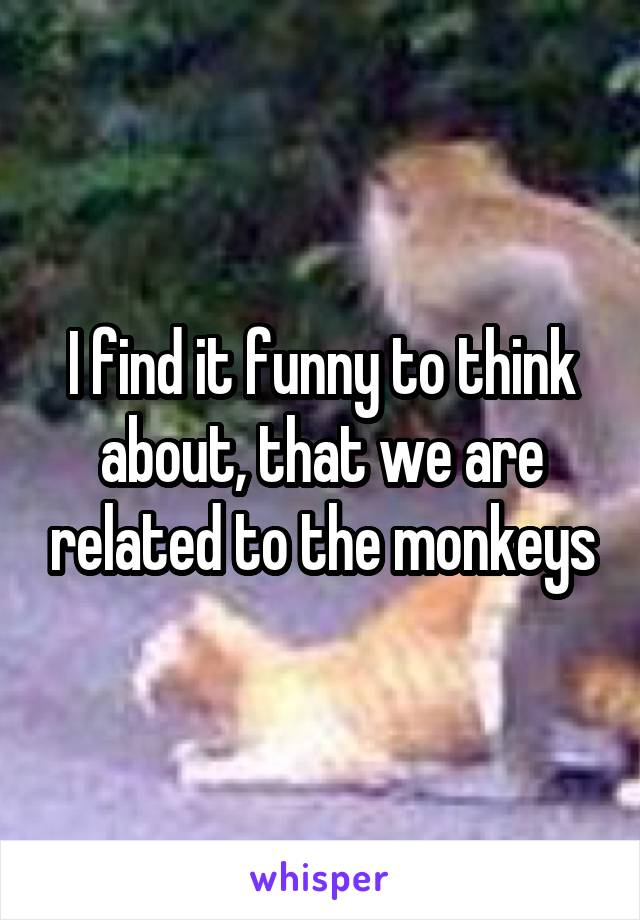 I find it funny to think about, that we are related to the monkeys