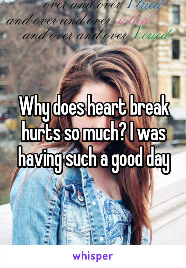 Why does heart break hurts so much? I was having such a good day