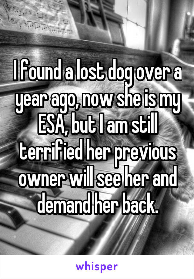 I found a lost dog over a year ago, now she is my ESA, but I am still terrified her previous owner will see her and demand her back.
