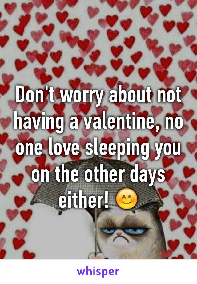 Don't worry about not having a valentine, no one love sleeping you on the other days either! 😊