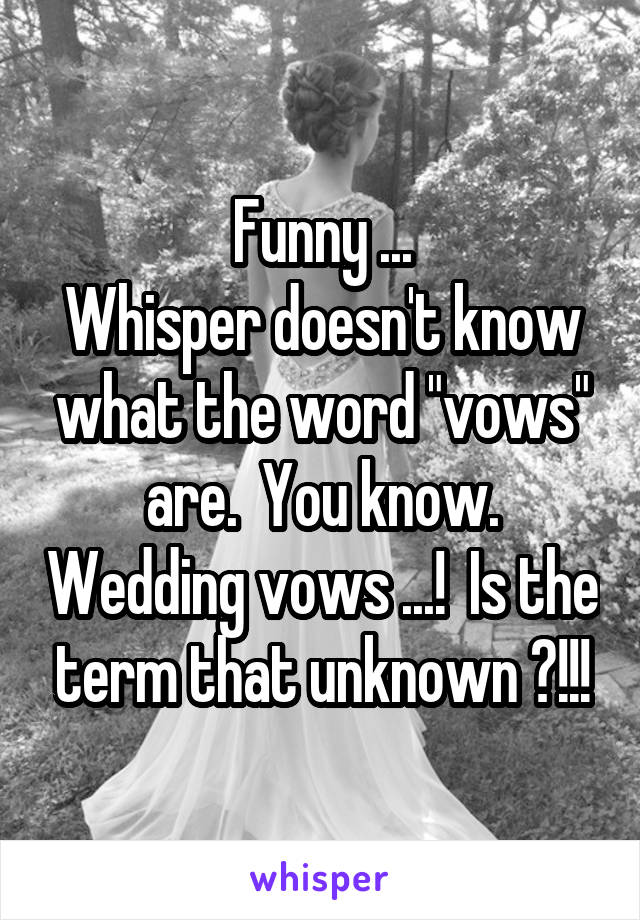 """Funny ... Whisper doesn't know what the word """"vows"""" are.  You know. Wedding vows ...!  Is the term that unknown ?!!!"""