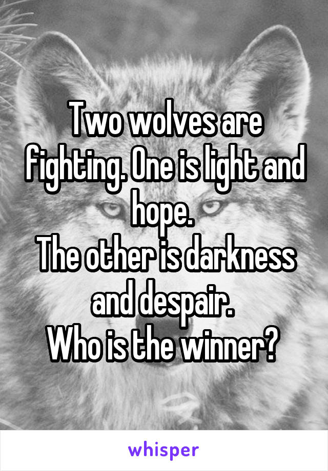Two wolves are fighting. One is light and hope.  The other is darkness and despair.  Who is the winner?
