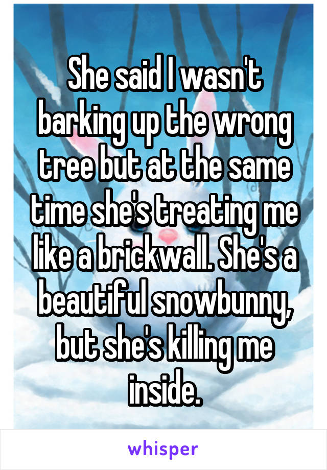 She said I wasn't barking up the wrong tree but at the same time she's treating me like a brickwall. She's a beautiful snowbunny, but she's killing me inside.