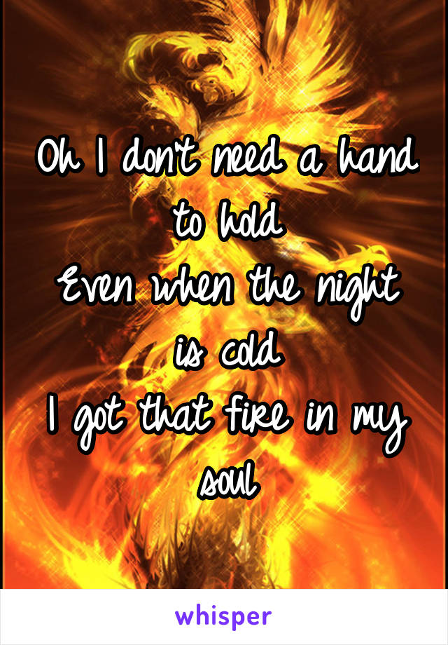 Oh I don't need a hand to hold Even when the night is cold I got that fire in my soul