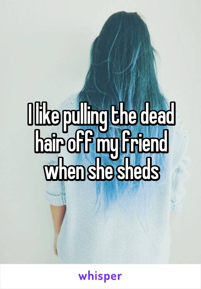 I like pulling the dead hair off my friend when she sheds