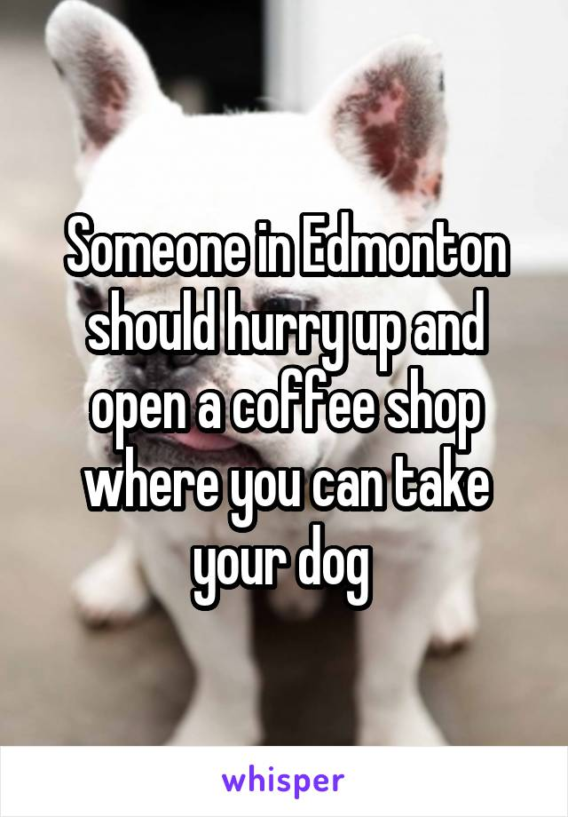 Someone in Edmonton should hurry up and open a coffee shop where you can take your dog