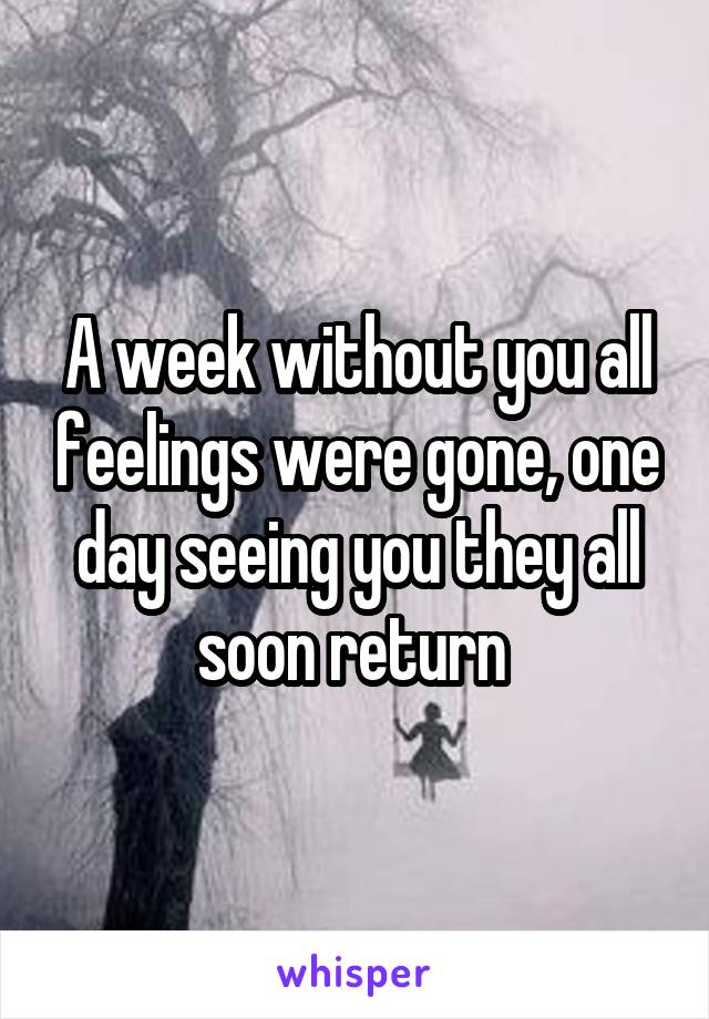 A week without you all feelings were gone, one day seeing you they all soon return
