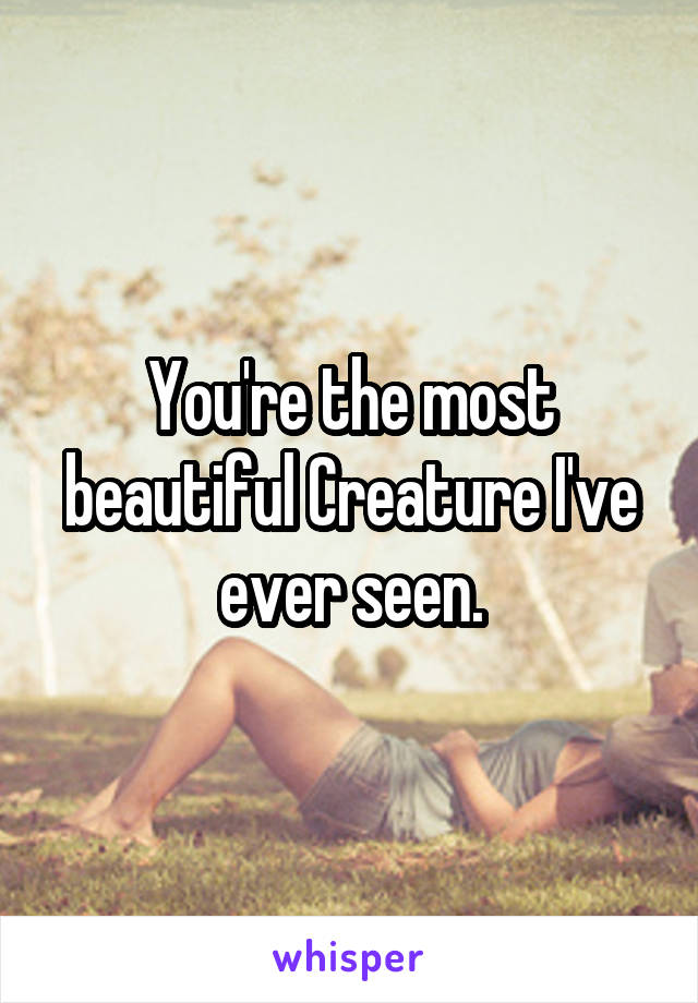 You're the most beautiful Creature I've ever seen.