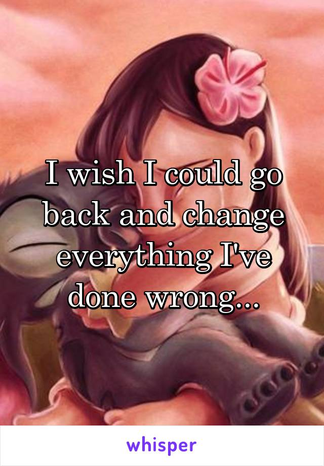 I wish I could go back and change everything I've done wrong...