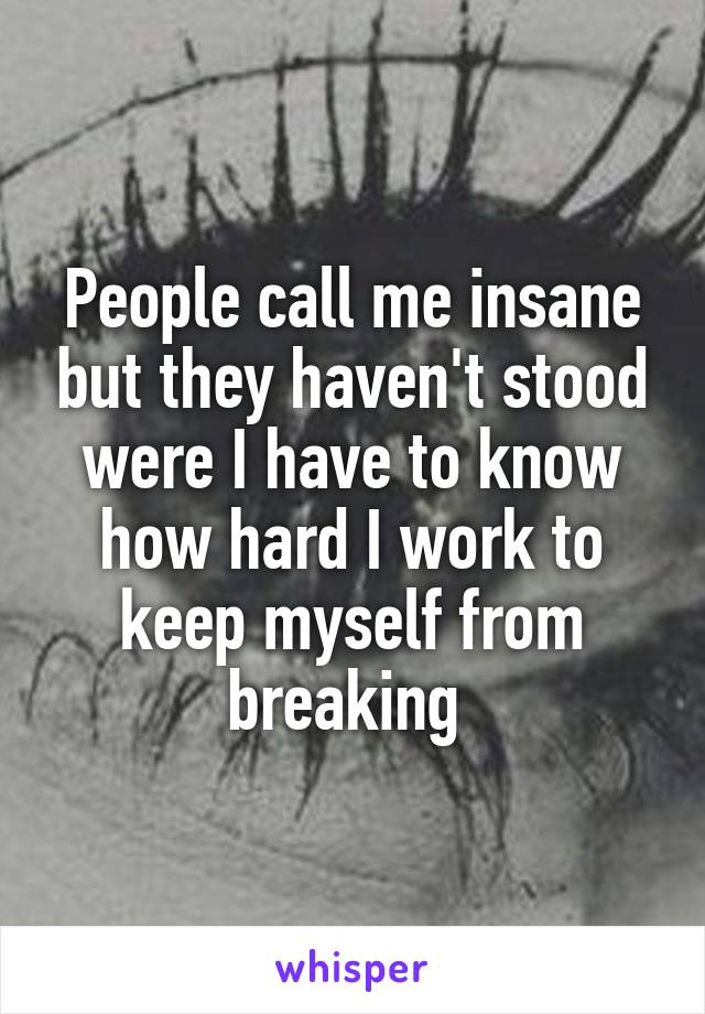 People call me insane but they haven't stood were I have to know how hard I work to keep myself from breaking