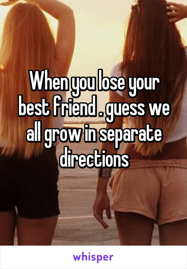 When you lose your best friend . guess we all grow in separate directions