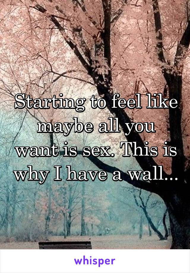 Starting to feel like maybe all you want is sex. This is why I have a wall...