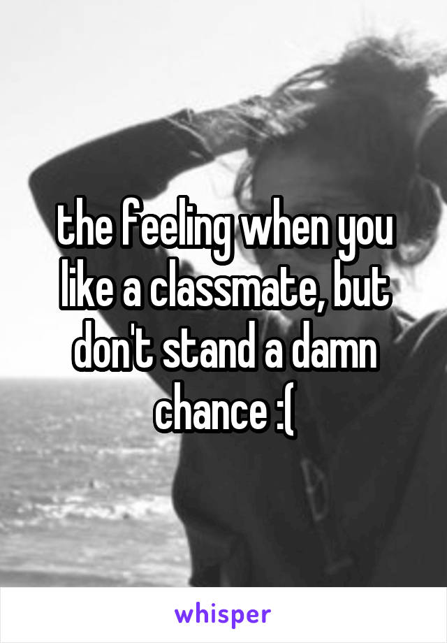 the feeling when you like a classmate, but don't stand a damn chance :(