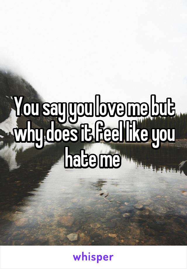 You say you love me but why does it feel like you hate me