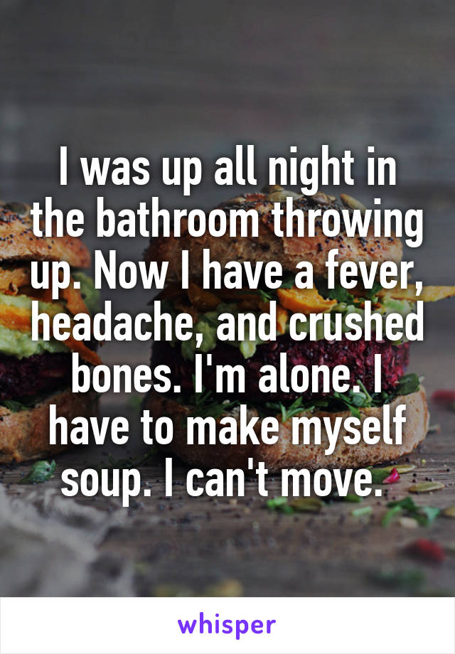 I was up all night in the bathroom throwing up. Now I have a fever, headache, and crushed bones. I'm alone. I have to make myself soup. I can't move.