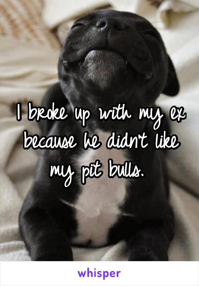 I broke up with my ex because he didn't like my pit bulls.