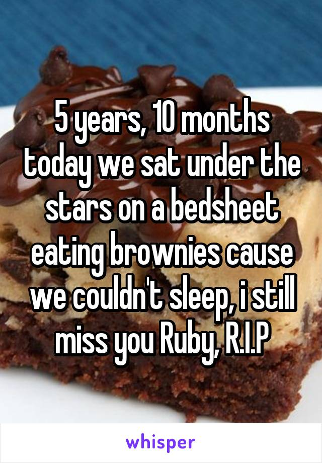 5 years, 10 months today we sat under the stars on a bedsheet eating brownies cause we couldn't sleep, i still miss you Ruby, R.I.P