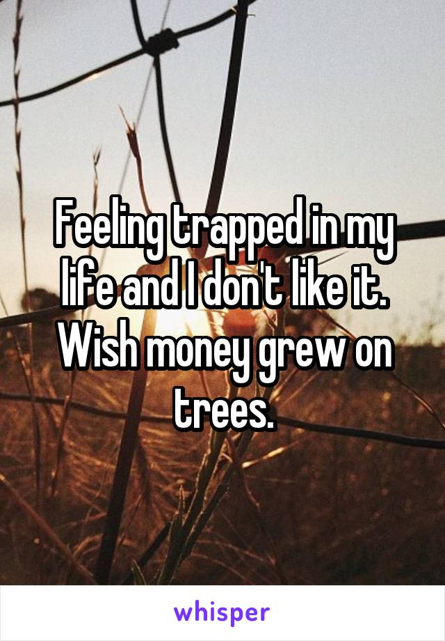 Feeling trapped in my life and I don't like it. Wish money grew on trees.